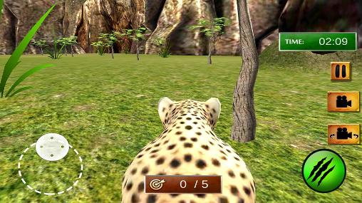 African cheetah: Survival sim