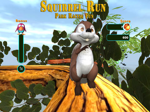Squirrel Run