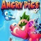Avec le jeu Master of eternity pour iPhone téléchargez Angry pigs: The sequel of the bird ipa gratuitement.