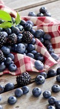 Food,Bilberries,Berries,Plants,Blackberry