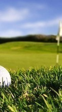 Golf,Landscape,Fields,Sports